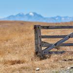 Old Gate at Mount John, Lake Tekapo
